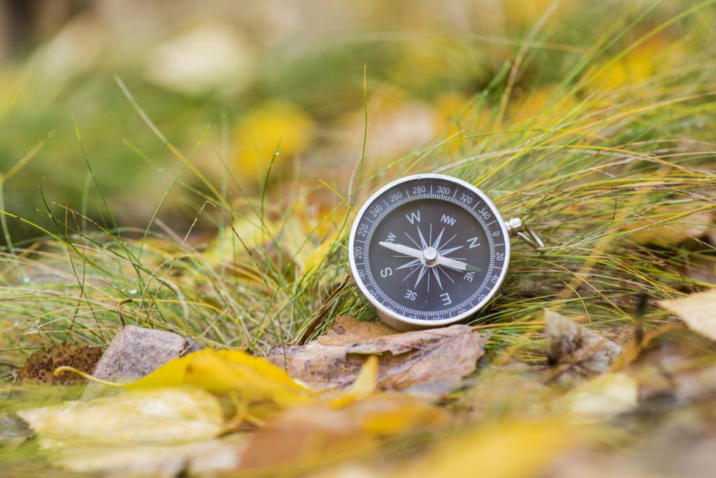 A compass is an instrument used for navigation and orientation that shows direction relative to the geographic cardinal directions, or points. Usually, a diagram called a compass rose, which shows the directions north, south, east, and west as abbrev
